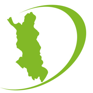 D-logo_vihreä